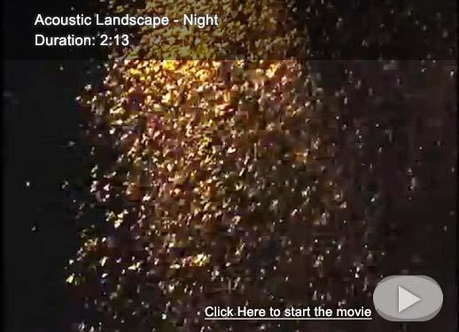 Acoustic Landscape - Night