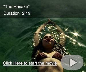 The Hasake